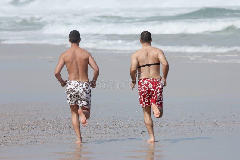 Frieds, das auf dem Strand rüttelt stockbilder
