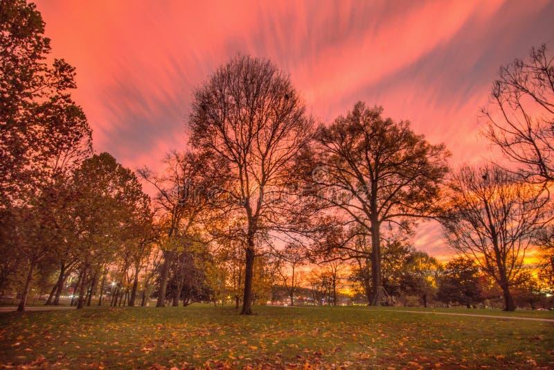 Friedvolle Landschaft lizenzfreie stockfotos