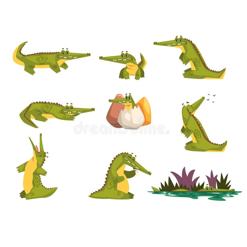 Friendly crocodile in different poses set, funny predator cartoon character, roc daily activities vector Illustration. Isolated on a white background vector illustration
