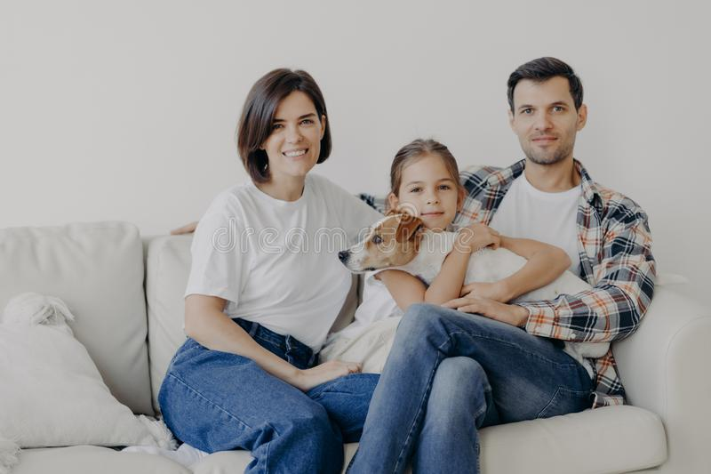 Friendly family pose together at sofa, enjoys domestic atmosphere. Father, mother, their little daughter and pedigree dog spend stock photography