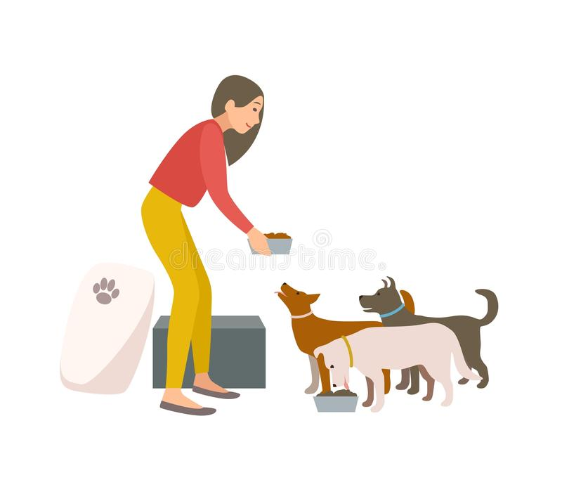 Friendly female volunteer feeding dogs in animal shelter or pound. Young woman giving food to homeless puppies isolated stock illustration