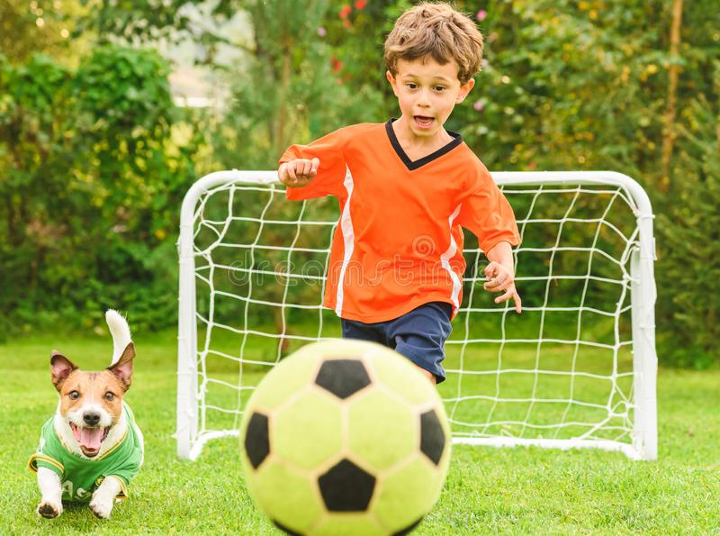 Kid in orange kit and dog chasing football soccer ball competing with each other. Friendly football match at backyard lawn royalty free stock photo