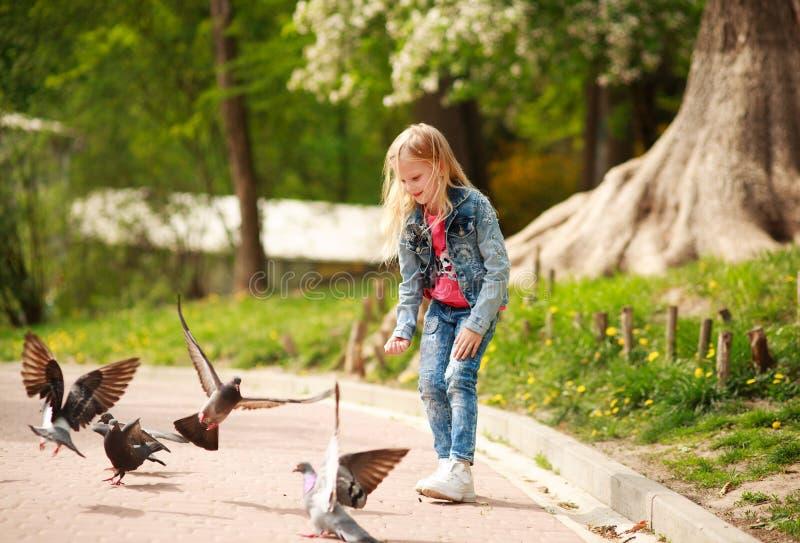 Friendly joyful girl child feeds pigeons in city summer park stock image