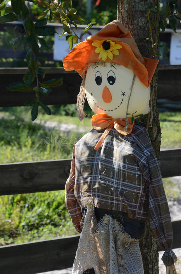 Friendly Scarecrow royalty free stock images