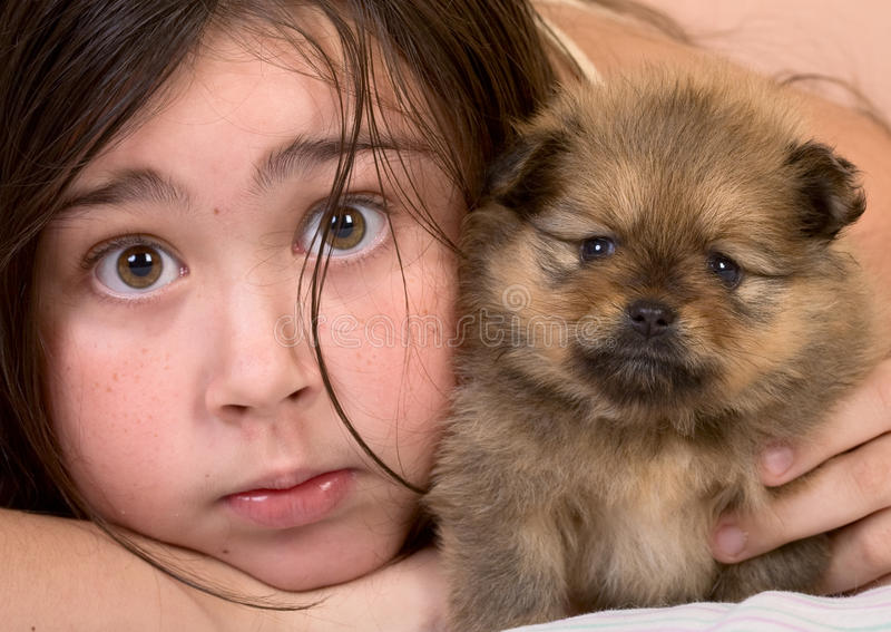 Friends. Little girl and cute pomeranian spitz puppy stock image