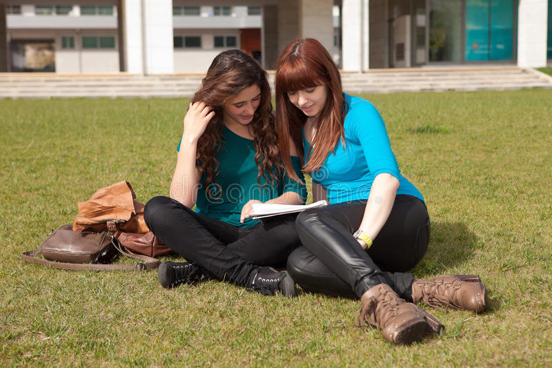 Download Friends stock image. Image of exam, outdoor, casual, learn - 25338079