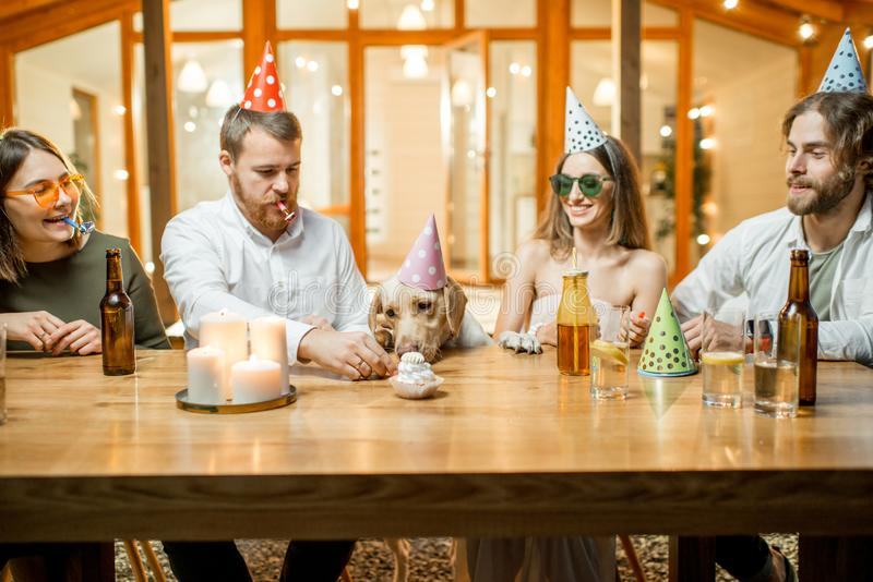 Friends celebrating dog`s birthday stock images