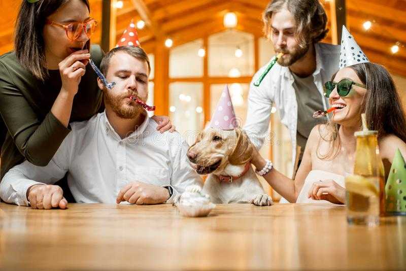 Friends celebrating dog`s birthday. With cake at the table on the backyard of the house in the evening royalty free stock photography