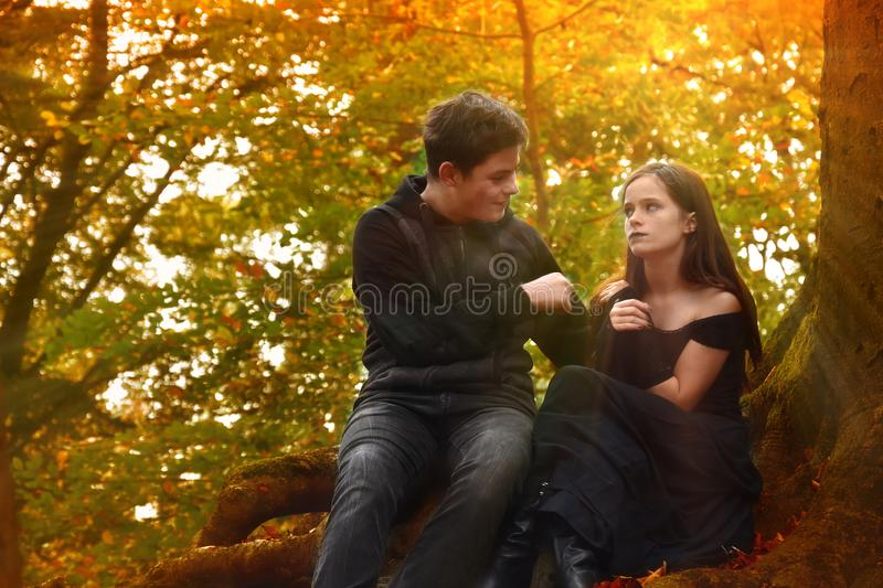 Friends enjoy a romantic mood in the autumn forest. Friends enjoy the sunbeams in the autumn forest. The boy tries to convince the girl of something. The girl royalty free stock image