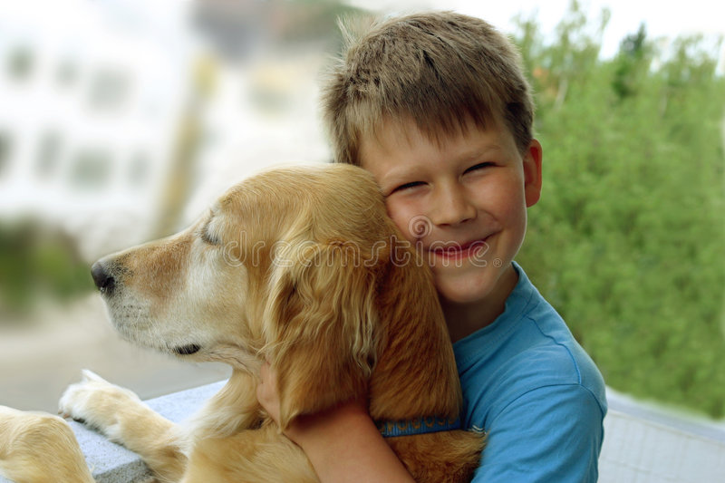Friends Forever. Happy seven year old boy in aquablue Tshirt coddles pet dog, the golden retriever Amy. Fit for friendship, bondage, bonding, camaraderie royalty free stock image