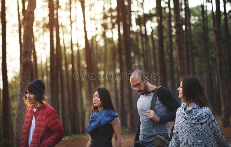 Friends hanging out in a forest royalty free stock photography