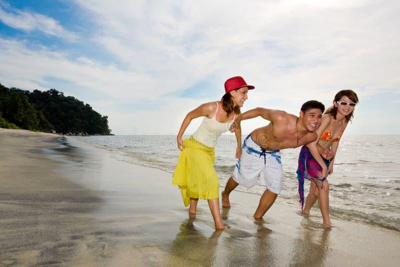 Download Friends Having Fun On The Beach Stock Photo - Image of sunshine, enjoy: 4459026