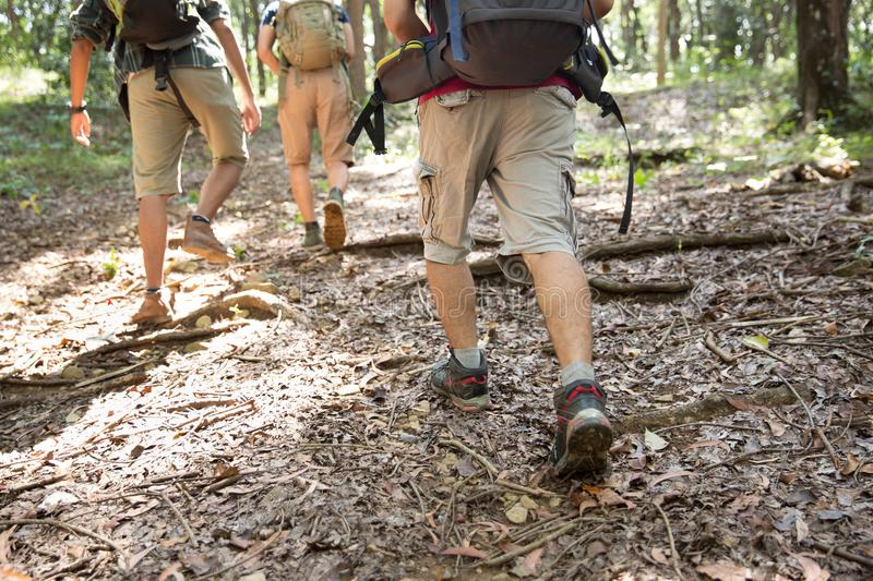 Friends hiking in outdoor summer activity stock photo