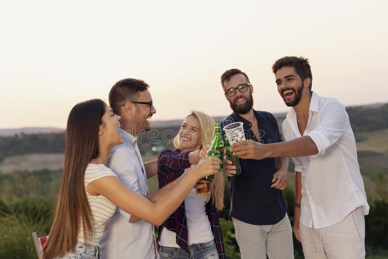 Friends making a toast at the party royalty free stock photography