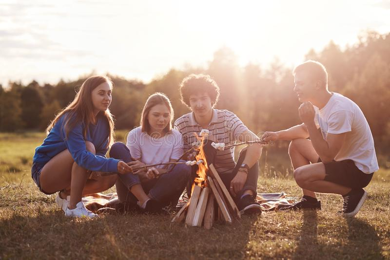 Friends in meadow lit bonfire and fry marshmallows, unset time, sunny summer day, group of youngsters spend leisure rime enjoying royalty free stock photos
