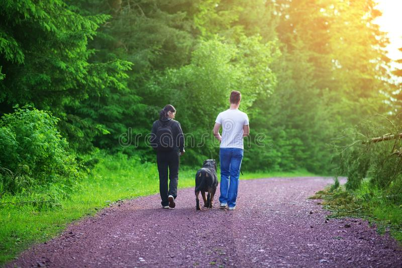 Friends mountaineers,walking in nature stock photography