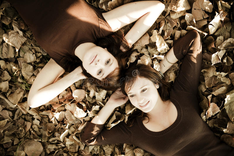 Friends Over Leaves Stock Image