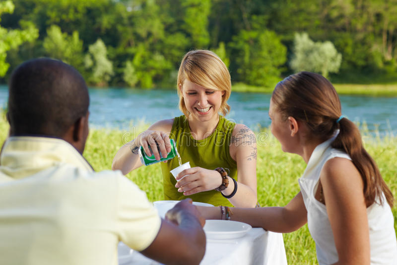 Friends picknicking stock image
