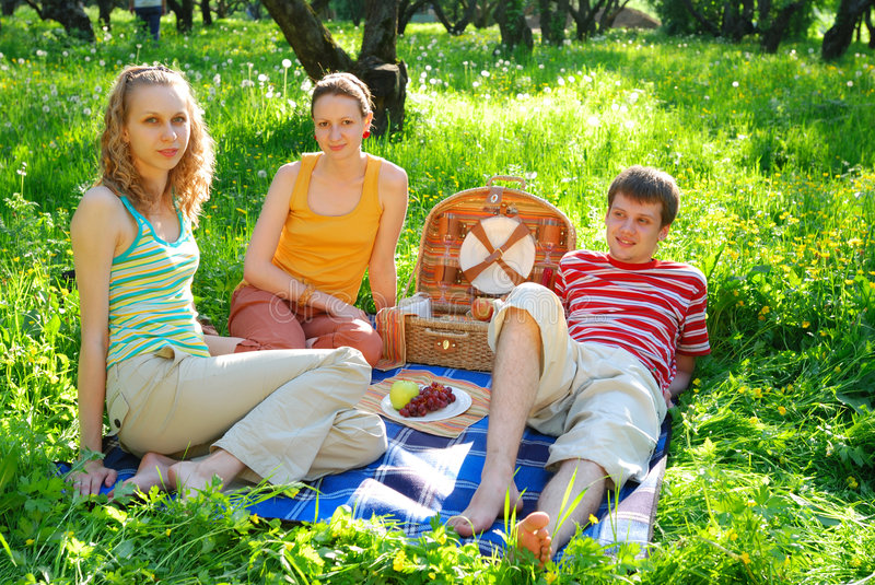 Download Friends on picnic stock photo. Image of pursuit, spring - 2526472