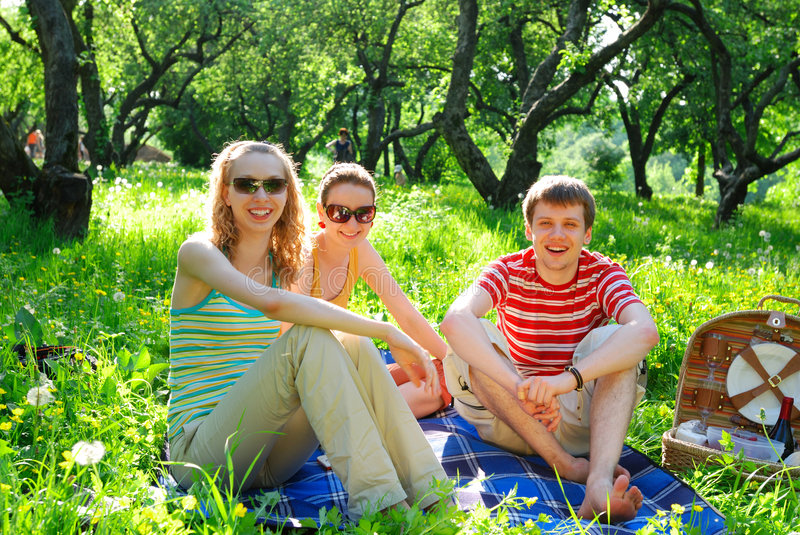 Download Friends on picnic stock image. Image of summer, happiness - 2526519