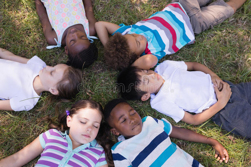 Friends sleeping on grassy field in forest royalty free stock images