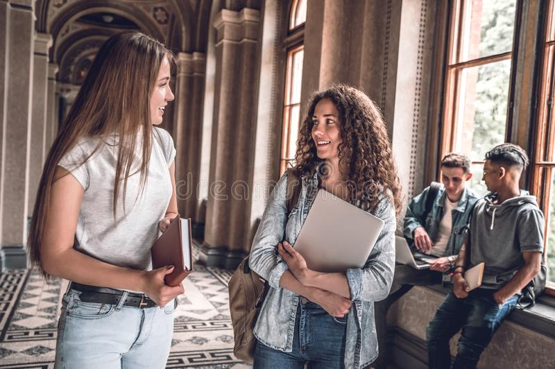 Friends and study partners! Group of college students standing together and chatting on the university hall royalty free stock image