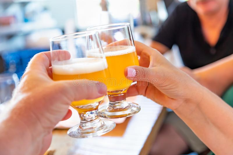 Friends Toast With Small Glasses of Micro Brew Beer at Bar. Friends Toast With Small Glasses of Micro Brew Beer at a Bar stock photography