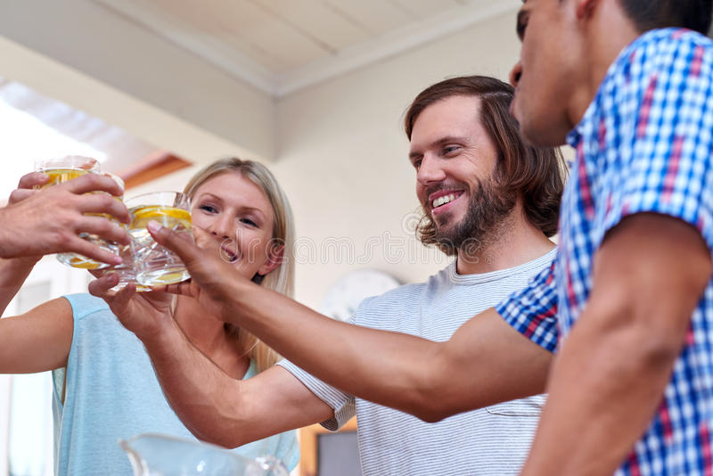 Friends toast. Young cheerful friends toasting indoors at gathering royalty free stock photo