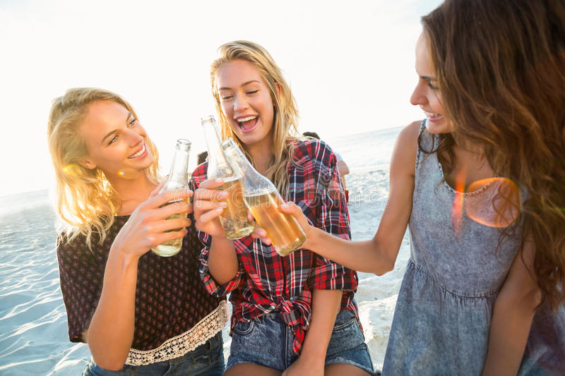 Friends toasting on the beach royalty free stock images