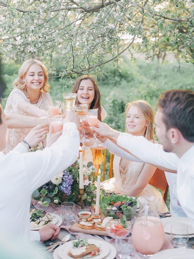 Friends toasting at picnic royalty free stock photos