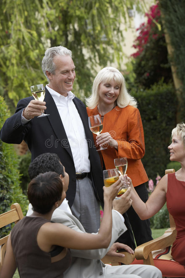 Friends Toasting Wine Together royalty free stock photos