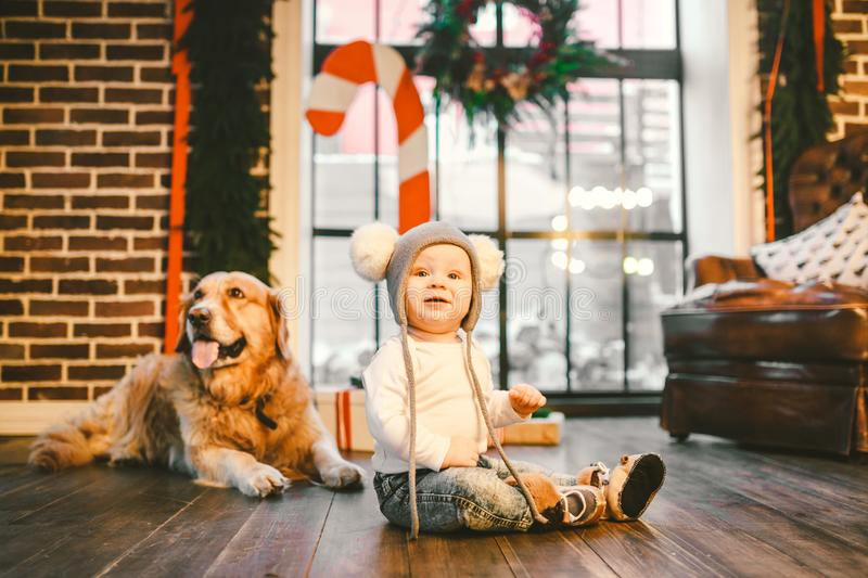 Friendship man child and dog pet. Theme Christmas New Year Winter Holidays. Baby boy crawling learns walk wooden floor decorated stock photos