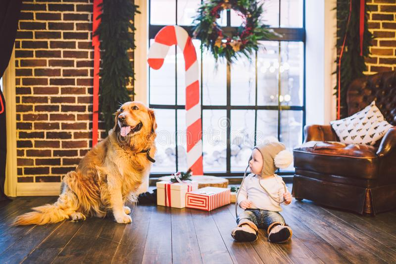 Friendship man child and dog pet. Theme Christmas New Year Winter Holidays. Baby boy crawling learns walk wooden floor decorated royalty free stock photo