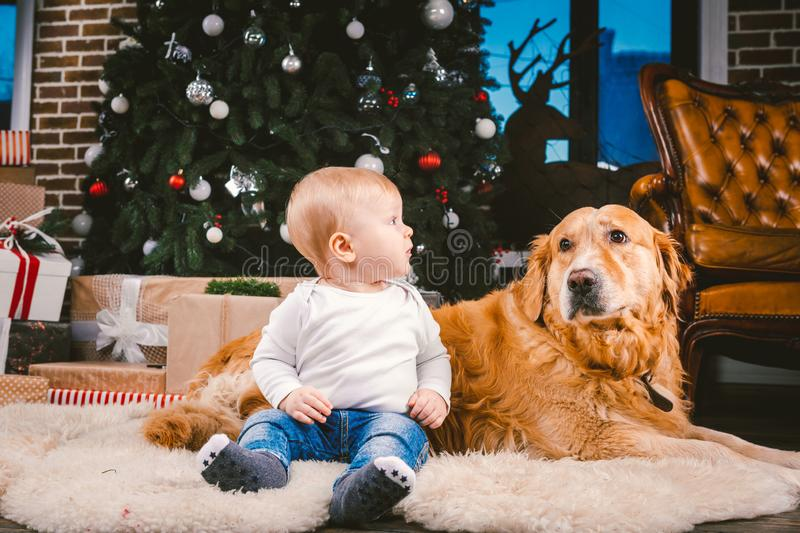 Friendship man child and dog pet. Theme Christmas New Year Winter Holidays. Baby boy on the floor decorated tree and best friend royalty free stock photography