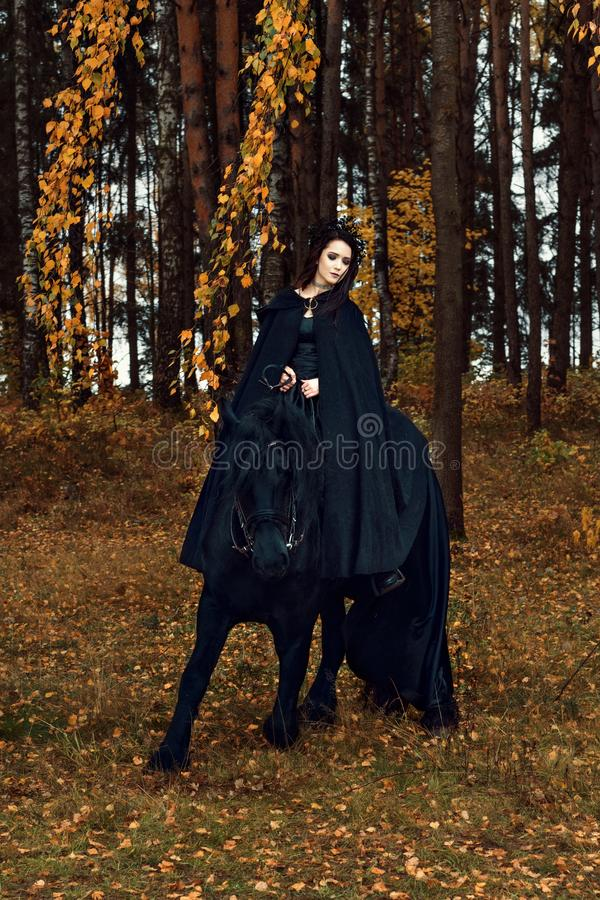 Friesian horse stays on one knee while training with a young woman in a black evening Gothic attire riding horseback stock image