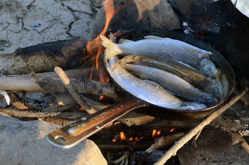 Friggiamo il pesce fotografia stock