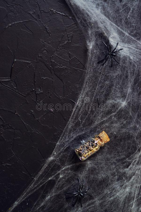 Frightful still life for Halloween, on wooden background royalty free stock photos