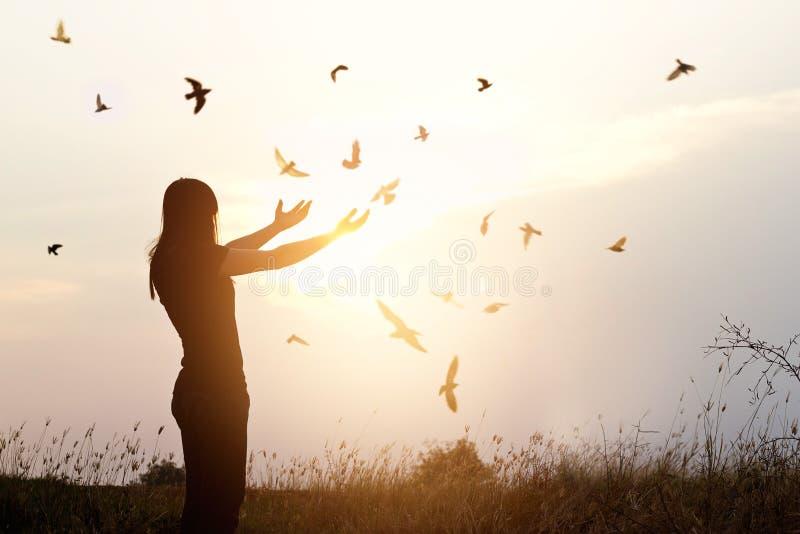 Frihet av liv, den fria fågeln och kvinnan som tycker om naturen på solnedgång arkivbilder