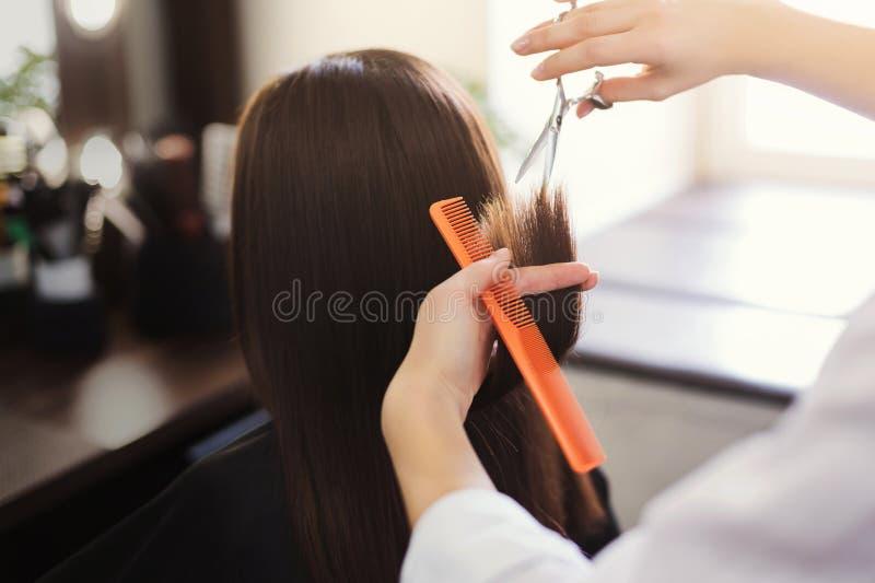 Frisör som klipper långt brunt hår med sax royaltyfria foton
