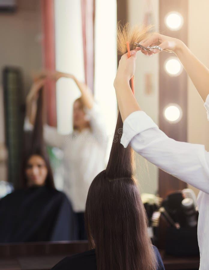 Frisör som klipper långt brunt hår med sax royaltyfri bild