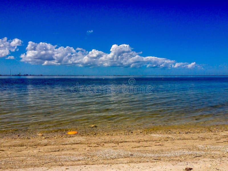 Frisbee на пляже стоковое фото rf