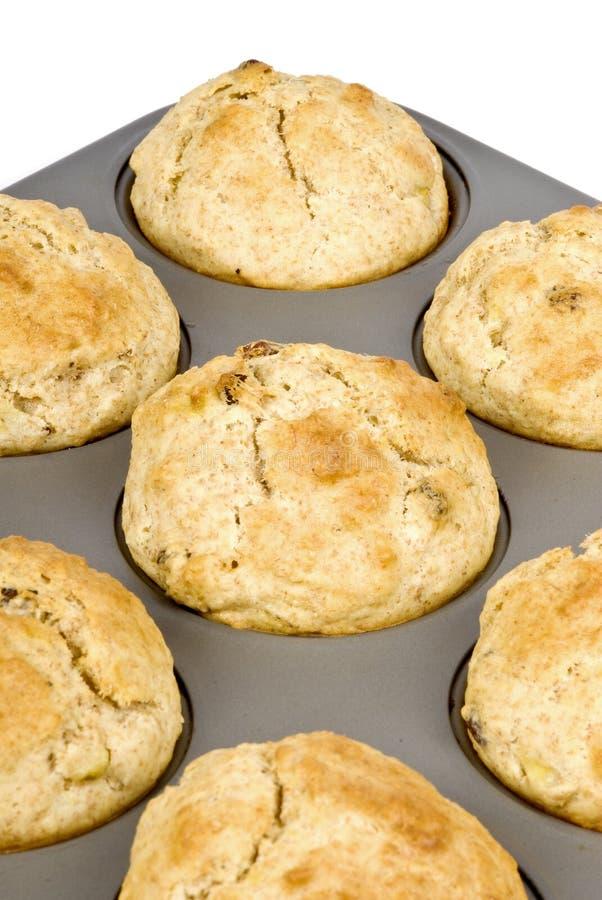Frisch gebackene Muffins stockbild