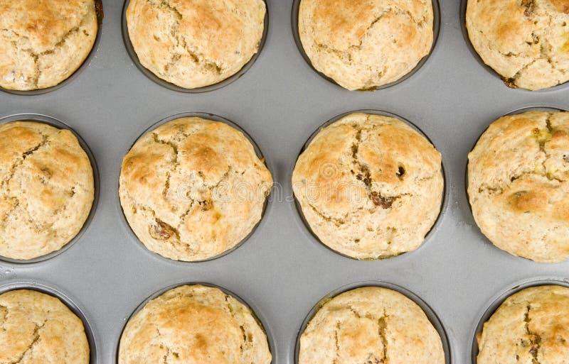 Frisch gebackene Muffins lizenzfreie stockfotos