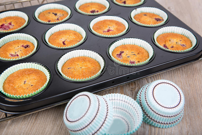 Frisch gebackene Muffins mit Mischbeeren lizenzfreies stockfoto