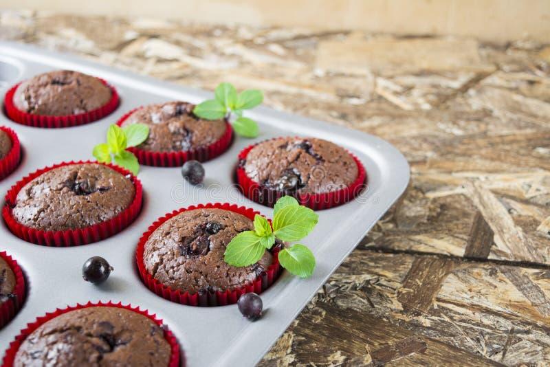 Frisch gebackene Schokoladenmuffins mit Korinthe und Minze in den roten Formen lizenzfreies stockfoto