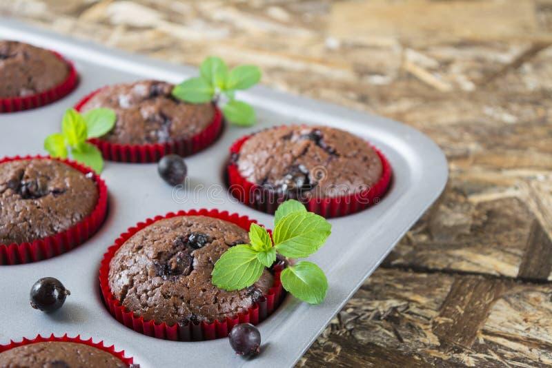 Frisch gebackene Schokoladenmuffins mit Korinthe und Minze in den roten Formen stockbild