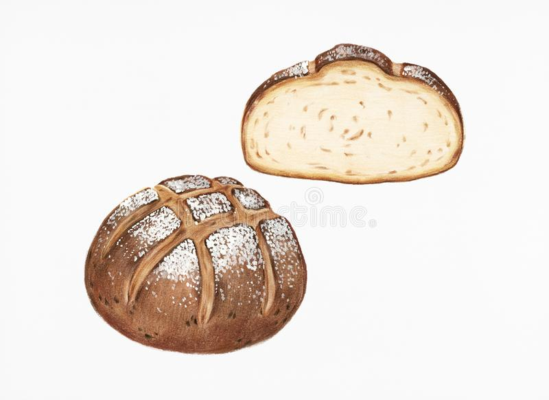 Frisch gebackene von Hand gezeichnete Illustration des Sauerteigbrotes stockfoto