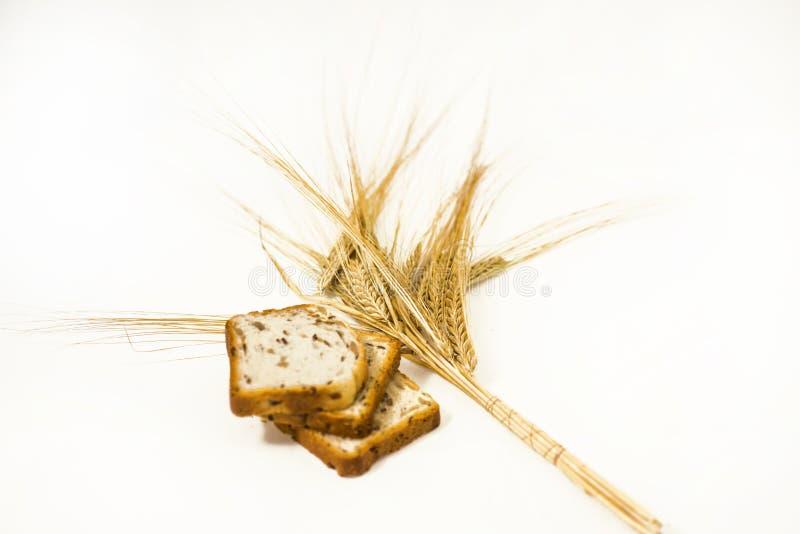 Frisch gebackenes traditionelles Brot mit den Ohren des Weizens stockbilder