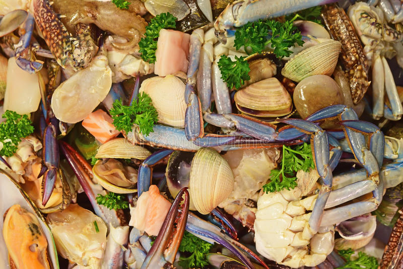 Frisch gefangene rohe Misch-marinara Meeresfrüchte mit Petersilienkräutern auf Anzeige für Verkauf am Fischmarkt lizenzfreie stockbilder