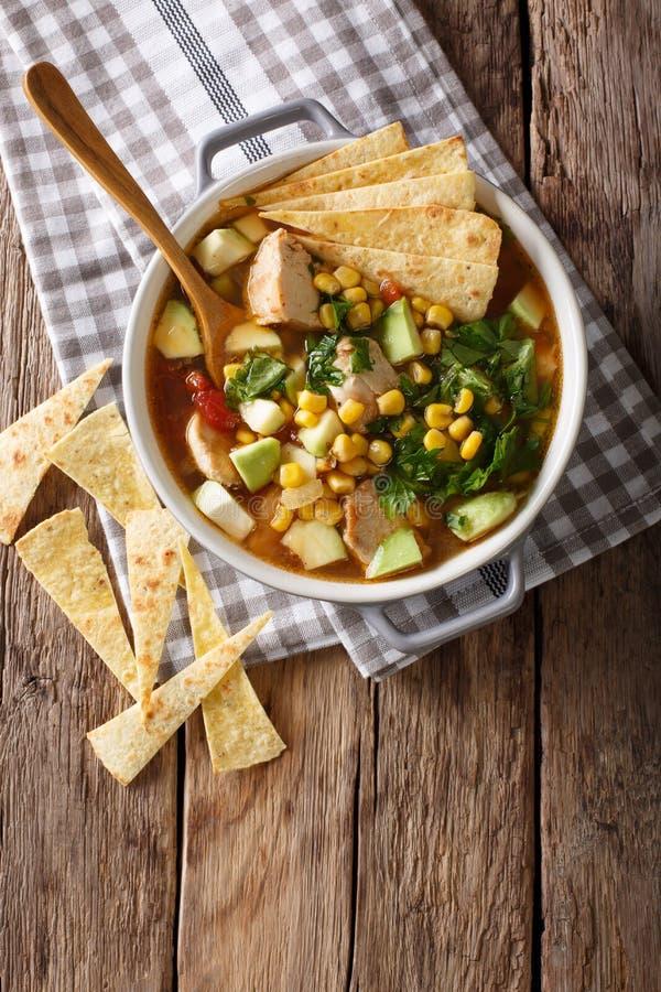 Frisch gekochte Tortillasuppe mit Hühner- und Gemüseabschluß-u lizenzfreies stockbild